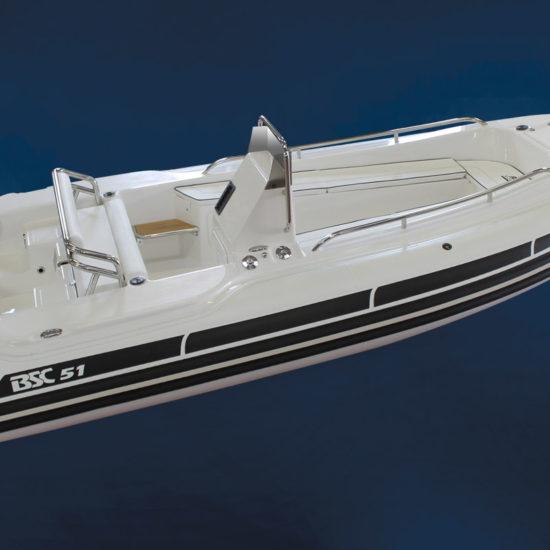 bsc-51-tender-01[1]